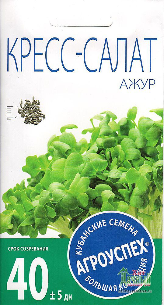 Лук батун русский зимний выращивание из семян 73